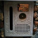 Leonardo's mailbox