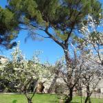 il giardino della Casa del Canovs