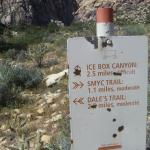 worth to visit the ice box canyon