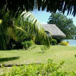 Vue (partielle) du bungalow