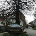 Photo of Gasthaus zur Traube