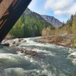 Springtime river from the bridge