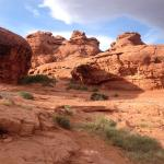 Beautiful red rocks & slot canyon. Nicely maintained. Paved and dirt trails. Spend as little or