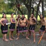 Waitangi Treaty Grounds Foto
