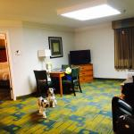 Photo de La Quinta Inn & Suites Tampa Bay Clearwater AP