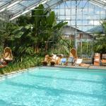 Bamboo pool&tropic garden
