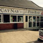 Cat nab fish bar