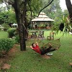 The resort garden