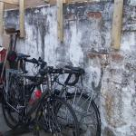 Cycles stowed for the night in our undercover storage area