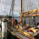 Day Sails on the Huon River