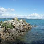 Waihi Beach Rock