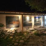 Michael Owen Art Gallery