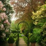 Gardens at The Ridges