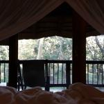 Zululand Tree Lodge Foto
