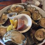 Huge oysters!