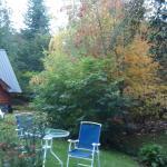 Jardin de mi cabaña
