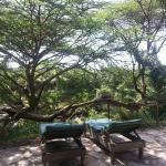 Foto de Oloshaiki Camp
