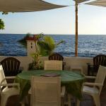 Foto de Coconut Palms Inn