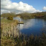 Meg's Lake - Beacon Hill Farm