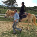 Photo of Holistic Riding Center