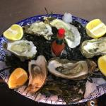 Fresh Oysters delivered daily