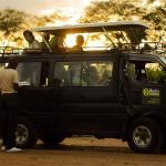 Msafiri Tours - Day Tours
