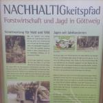 History of the surrounding forrest