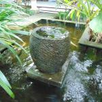 Water feature/fish pond