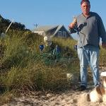 Foto de Sandbars on Cape Cod Bay
