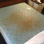 Room #535 mattress was a health code violation at the very least.