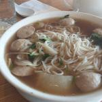 chicken ball and noodle soup