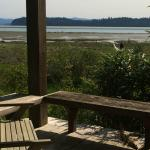 View of Willapa Bay from the Sauna building