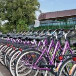 Med över 800 cyklar finns det något för alla!