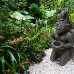 Mariposa côté jardin