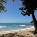 Foto de Karibea Resort Sainte Luce