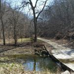 Spring feed trout stream surrounded by limsetone bluffs
