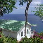 Nature's Paradise Foto