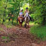 HorsebackRiding and Hiking Trail from Lodge