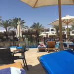 Pool - Sharm Dreams Resort Photo