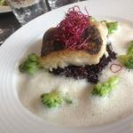 Fish and risotto with foam