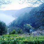 Foto de Hartland House Spa and Cottages