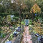 Barewood Garden