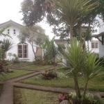 garden gradia 1