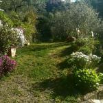 Foto di Villa Caterina