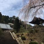 長興寺 春