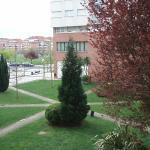 Vista desde la habitacion,jardin del edificio