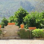 Foto de Quinta de Cachopaes
