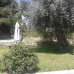 giardinetto 2