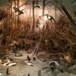 Museum of the Arkansas Grand Prairie