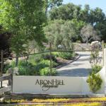 AronHill Driveway